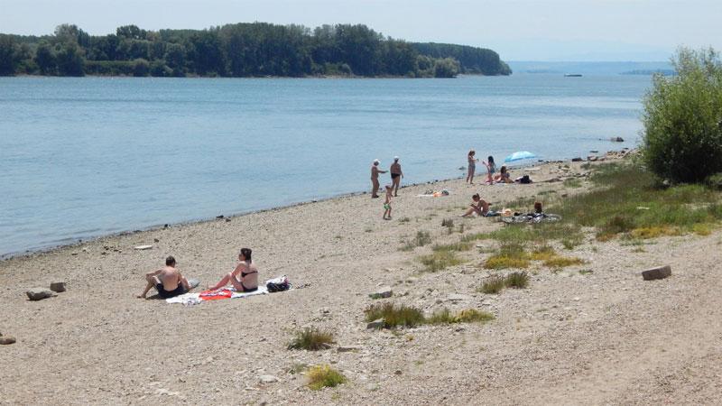 Здравната инспекция: Къпането в Дунав е опасно!
