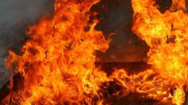 Пожари във Видинско