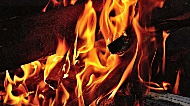 Пожар унищожи 10 тона слънчоглед във Видин